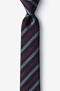 Santiago Skinny Tie Photo (0)