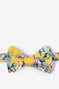 Yellow Cotton Abney Butterfly Bow Tie