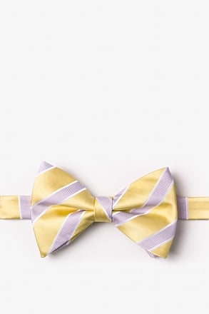 Jefferson Stripe Yellow Pre-Tied Bow Tie