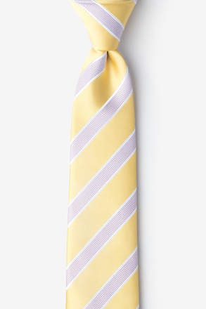_Jefferson Stripe Yellow Tie For Boys_