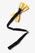 Metal-Tipped Yellow Pre-Tied Bow Tie Photo (1)