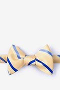 Yellow Silk Bann Self-Tie Bow Tie