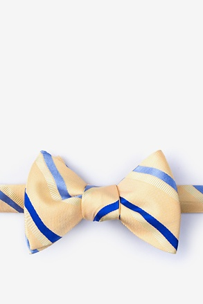 _Bann Yellow Self-Tie Bow Tie_