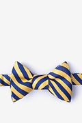 Yellow Silk Glyde Bow Tie
