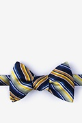 Yellow Silk Moy Butterfly Bow Tie
