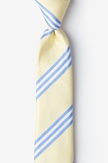 Pioneer Yellow Skinny Tie Photo (0)