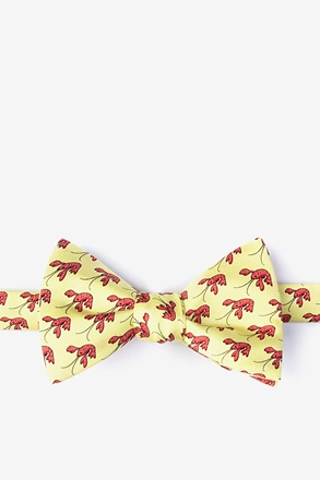 That Fish Cray Self-Tie Bow Tie